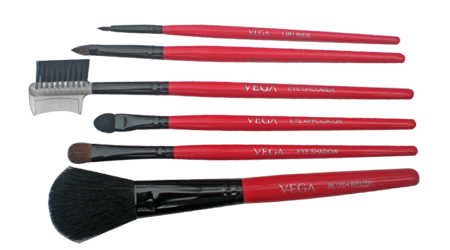 Vega Set of 6 Make-up Brushes